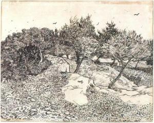 Olive-Trees,-Montmajour